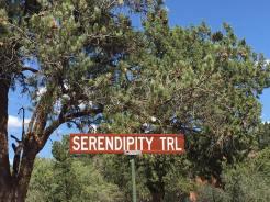serendipitysign